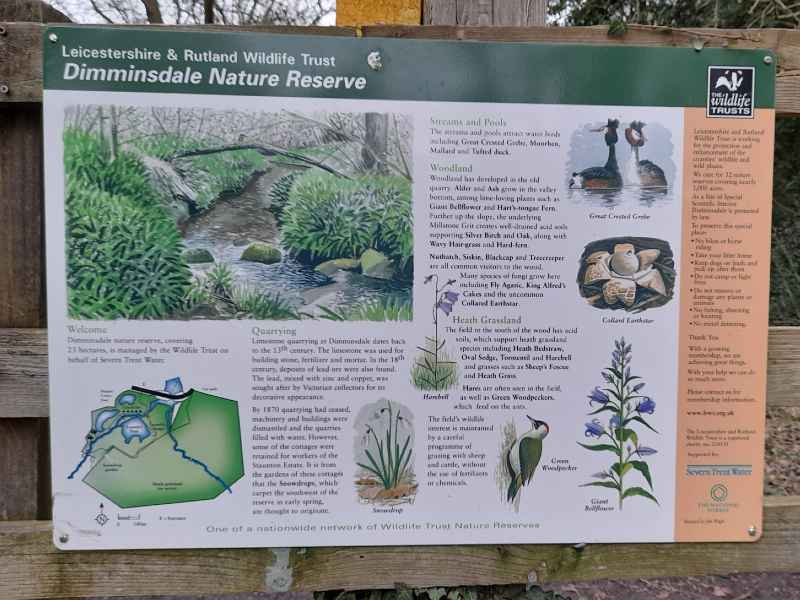 Dimminsdale Nature Reserve